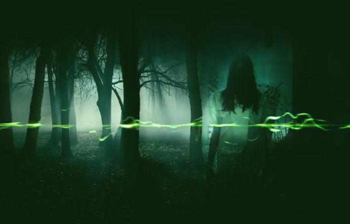 ghost evp 1
