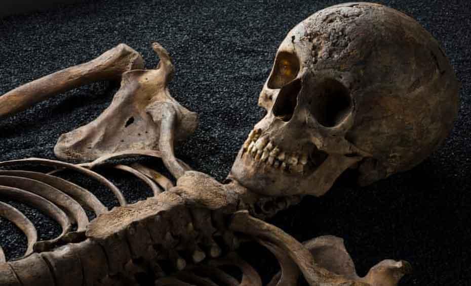 ανθρώπινοι σκελετοί